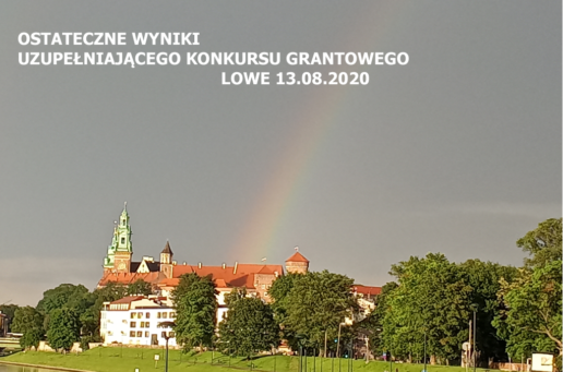 OSTATECZNE WYNIKI UZUPEŁNIAJĄCEGO KONKURSU GRANTOWEGO LOWE, 13.08.2020